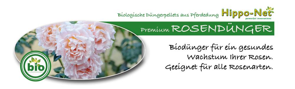 rosen72_banner3